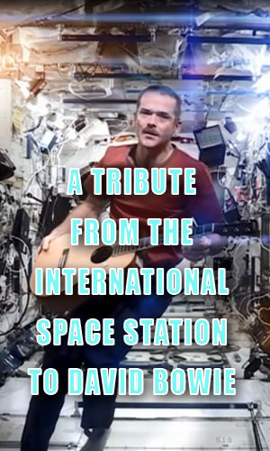 "Canadian astronaut Chris Hadfield spent five months in space, during which he recorded David Bowie's Space Oddity, a cover Bowie called ""possibly the most poignant version of the song ever created."""