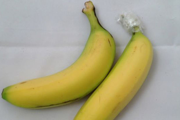 Give bananas a longer life