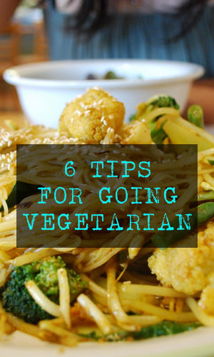 There are many reasons that one would choose to be vegetarian. The media is filled with medical and societal reasons that would push you to make the change. Here are a few tips that may help you with the transition into vegetarian living.