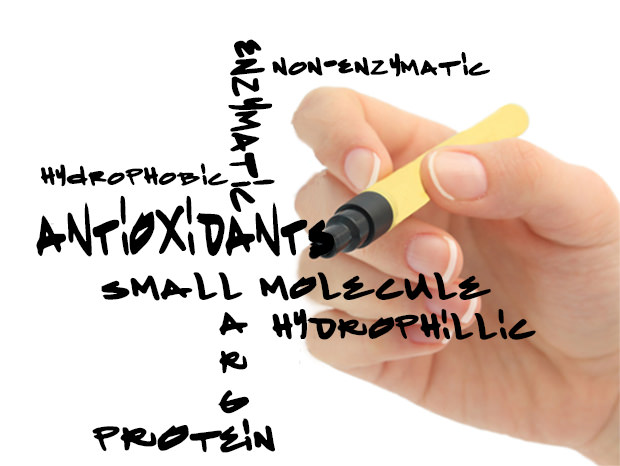 antioxidants marker