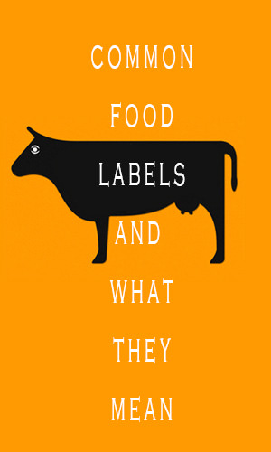 Today, a bewildering range of terms and claims are used to promote and label the food we buy. But what exactly do all these terms and claims really mean – and how can you be confident that they are true? This guide will help you understand the jargon a little better and steer clear of the deceptive ones.