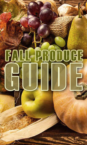 As the weather starts to get colder and the leaves start to fall, new produce can be seen all around your local farmer's market. Here's a guide of what to look for this fall.