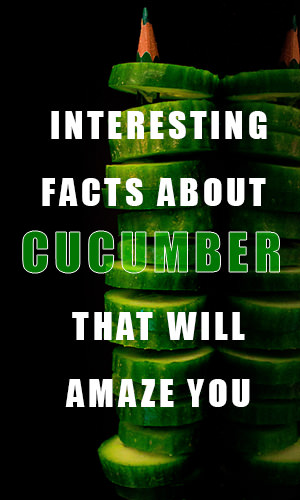 Turns out that cucumber isn't just for placing over your eyes while you get a facial. Here are some fun and surprising facts about them that you never knew.