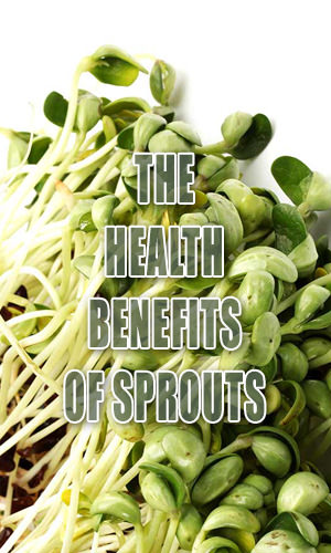 Although we most often eat ungerminated varieties, all plant seeds, nuts and vegetable seeds are able to sprout new plants. The nutritional profile of sprouted foods is superior in some ways to that of their unsprouted counterparts. Read on to find out what they are.