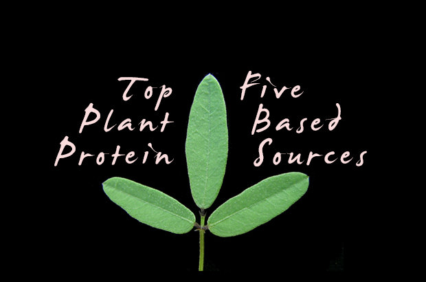 Top Five Plant-Based Protein Sources