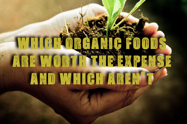 Which Organic Foods Are Worth The Expense And Which Aren't
