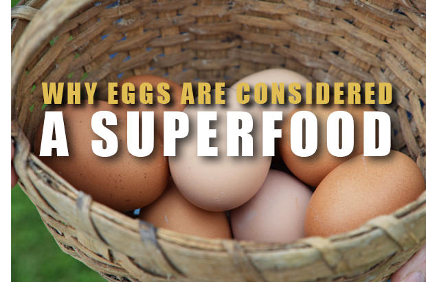 Why Eggs Are Considered A Superfood