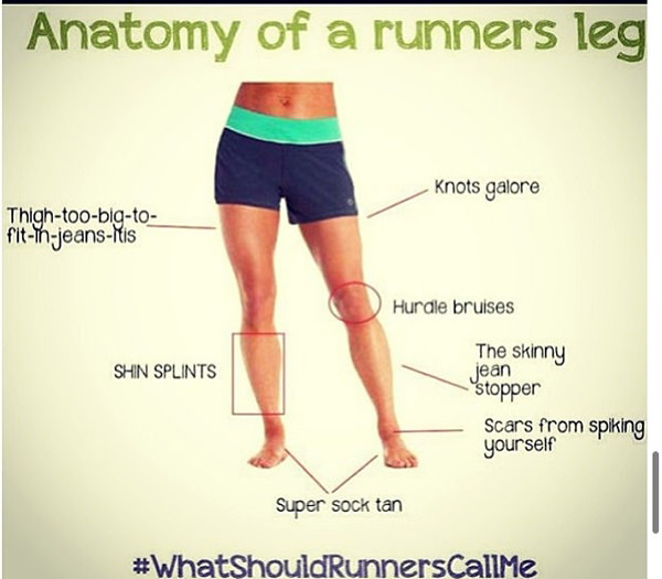Funnies You'll Enjoy It You're A Runner #13: Anatomy of a Runner's Leg