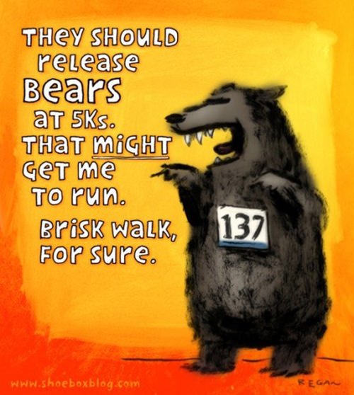 Runner Humor #2: They should release bears at 5Ks. That might get me to run. Brisk walk, for sure.