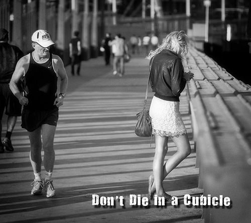 Runner Humor #14: Don't die in a cubicle. Go running.