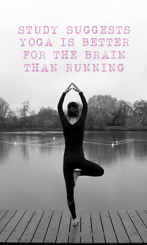 A new study not only suggests that yoga is good for our brains, but that it actually makes them work better. Find out how yoga, and exercise, contribute to a healthier brain.