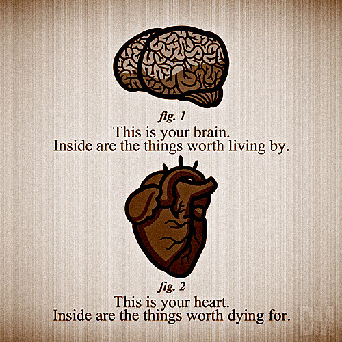 Runner Things #1872: This Is Your Brain. Inside Are The